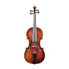 Image of term violin