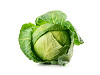 Image of term cabbage